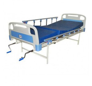 Wellton Healthcare Full fowler Hospital Bed With Mattress and Side Railing WH-609