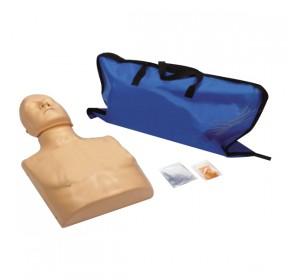 Wellton Healthcare CPR Training Manikin (Torso) Medical Model